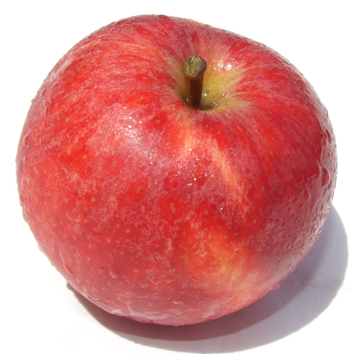 Apple - Royal Gala