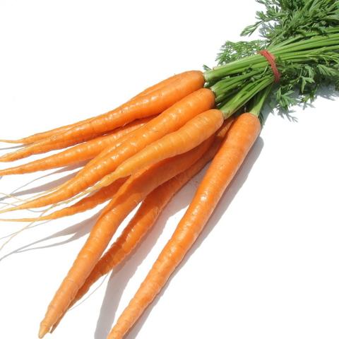 Carrots - Baby Orange