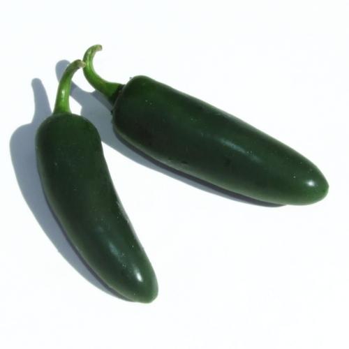Chillies - Jalapeno Green (Punnet)