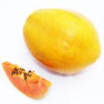Pawpaw/ Papaya - Red