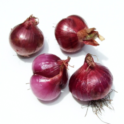 Shallots - Red