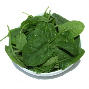 Spinach - Baby Leaves
