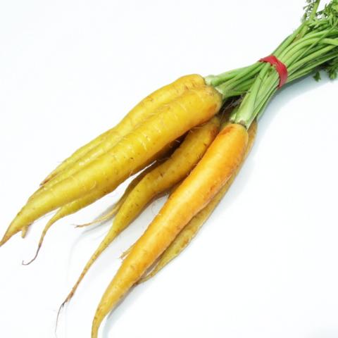 Carrots - Baby Yellow