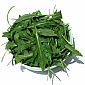Salad Leaves - Wild Rocket
