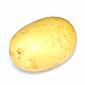 Potato - Medium Washed