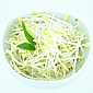 Sprouts - Bean Sprouts