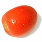 Tomato - Roma/Egg
