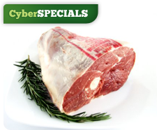 CyberSPECIALS