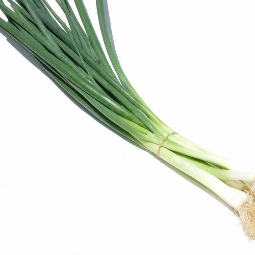 Eschallots - Green
