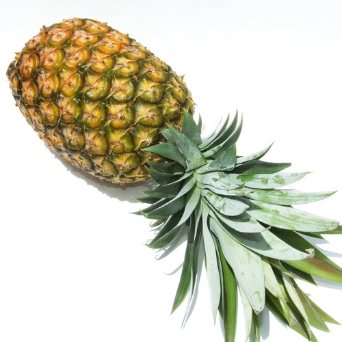 Pineapple-smooth